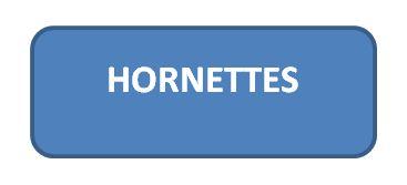 HORNETTES